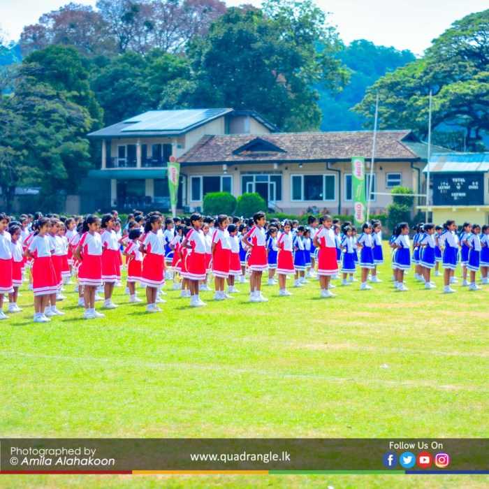HCK_PRIMARY_SPORTSMEET_2019_DRILLDISPAY (33)
