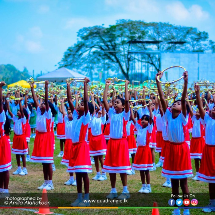 HCK_PRIMARY_SPORTSMEET_2019_DRILLDISPAY (37)