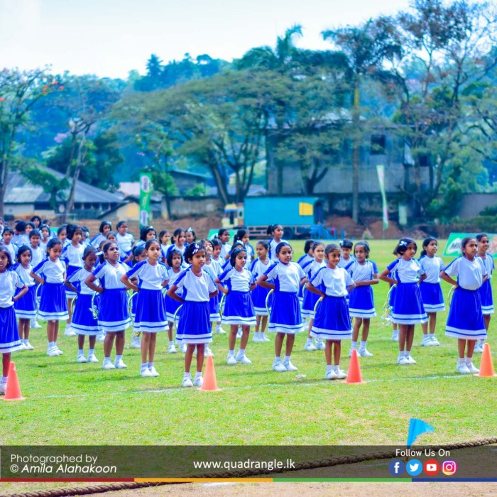 HCK_PRIMARY_SPORTSMEET_2019_DRILLDISPAY (39)