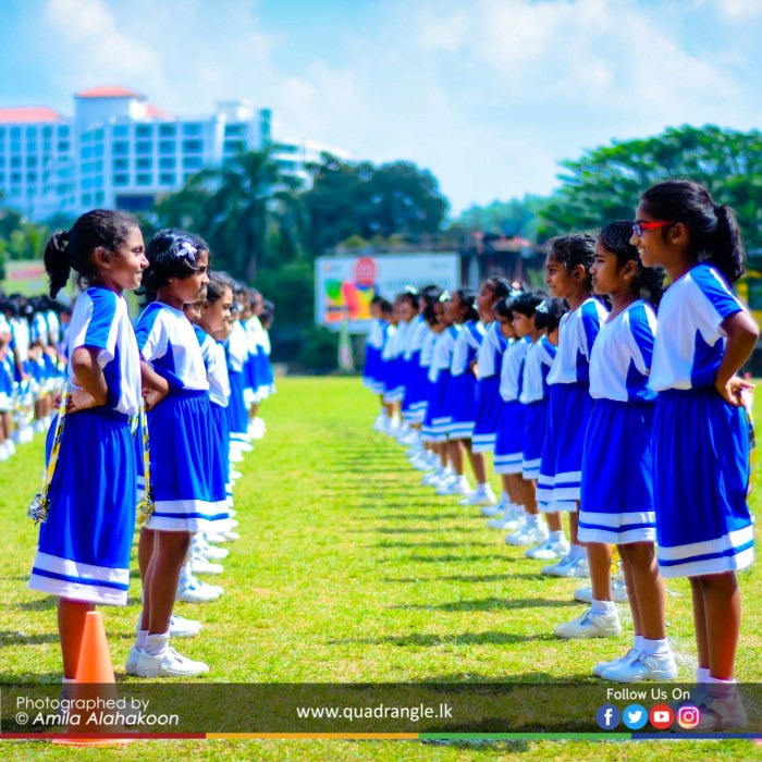 HCK_PRIMARY_SPORTSMEET_2019_DRILLDISPAY (41)