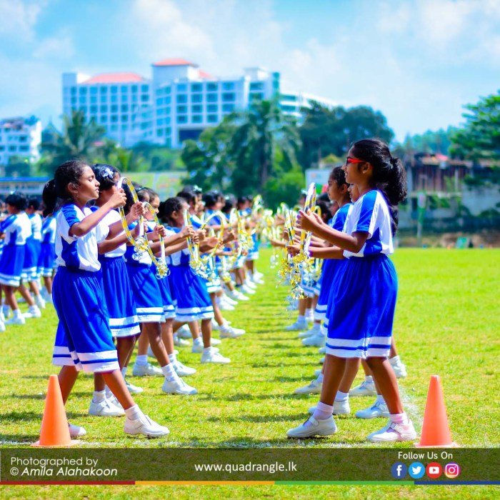HCK_PRIMARY_SPORTSMEET_2019_DRILLDISPAY (42)