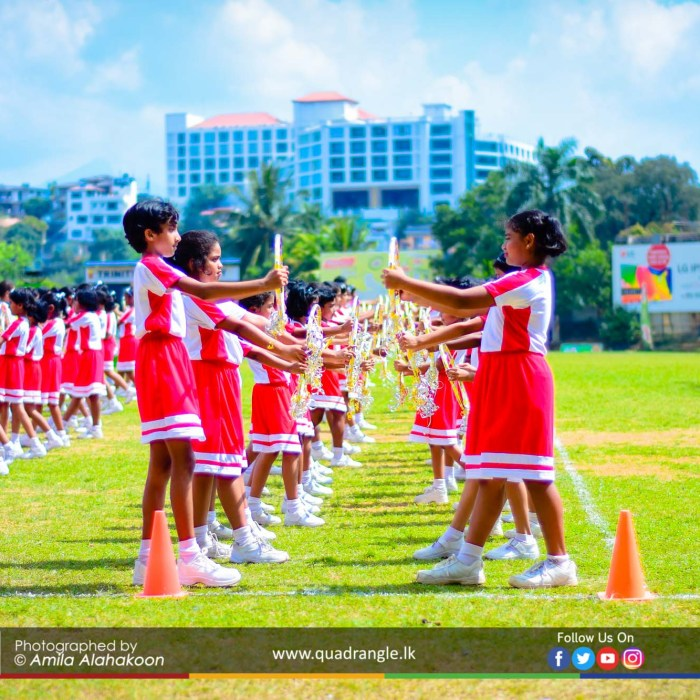 HCK_PRIMARY_SPORTSMEET_2019_DRILLDISPAY (43)