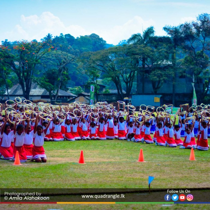 HCK_PRIMARY_SPORTSMEET_2019_DRILLDISPAY (53)