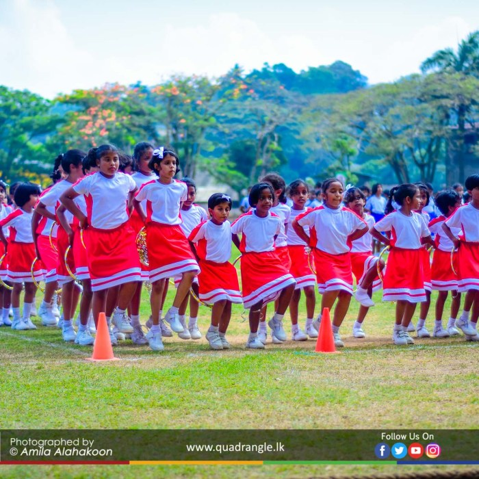 HCK_PRIMARY_SPORTSMEET_2019_DRILLDISPAY (55)