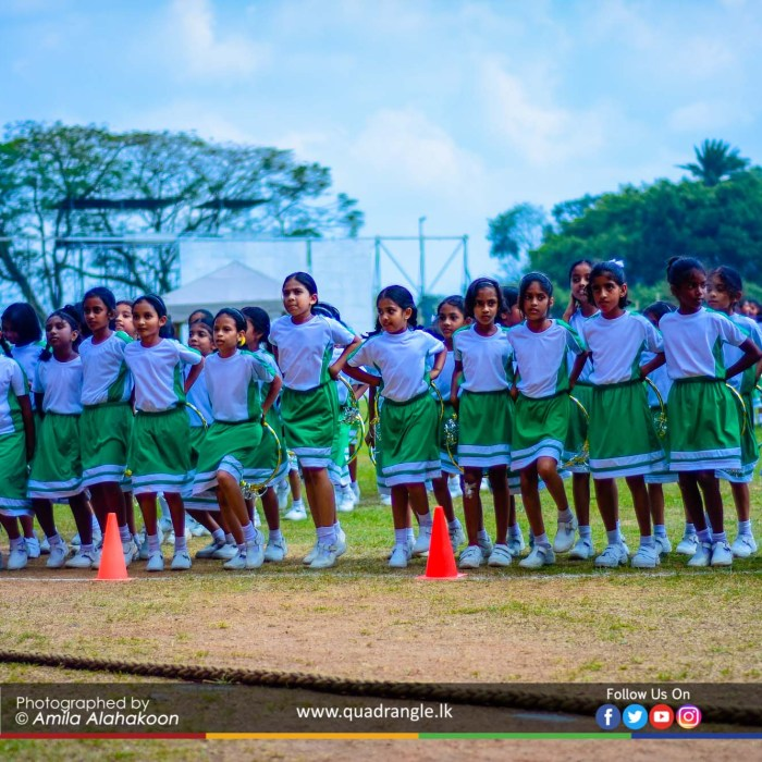 HCK_PRIMARY_SPORTSMEET_2019_DRILLDISPAY (58)