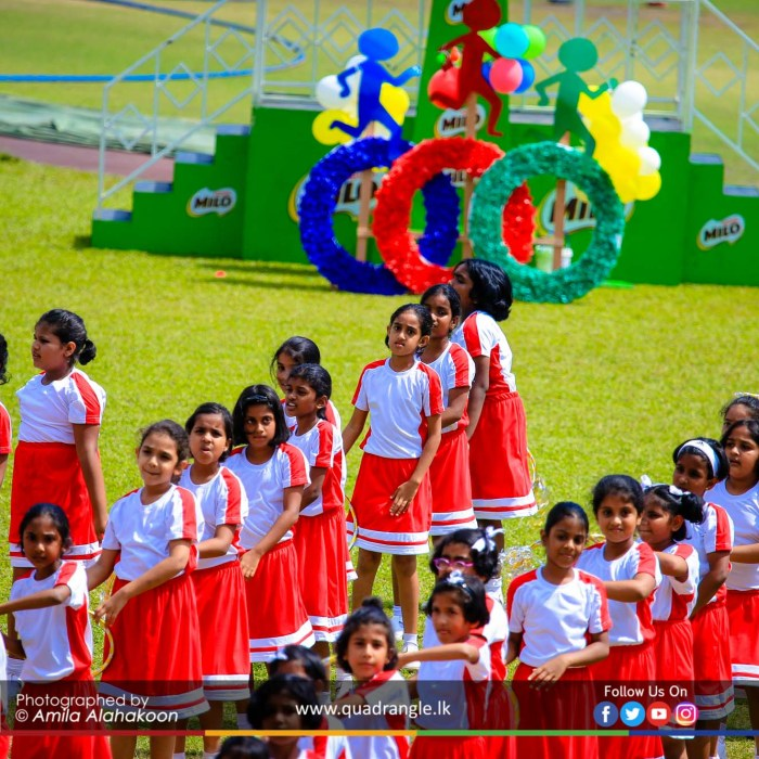 HCK_PRIMARY_SPORTSMEET_2019_DRILLDISPAY (63)