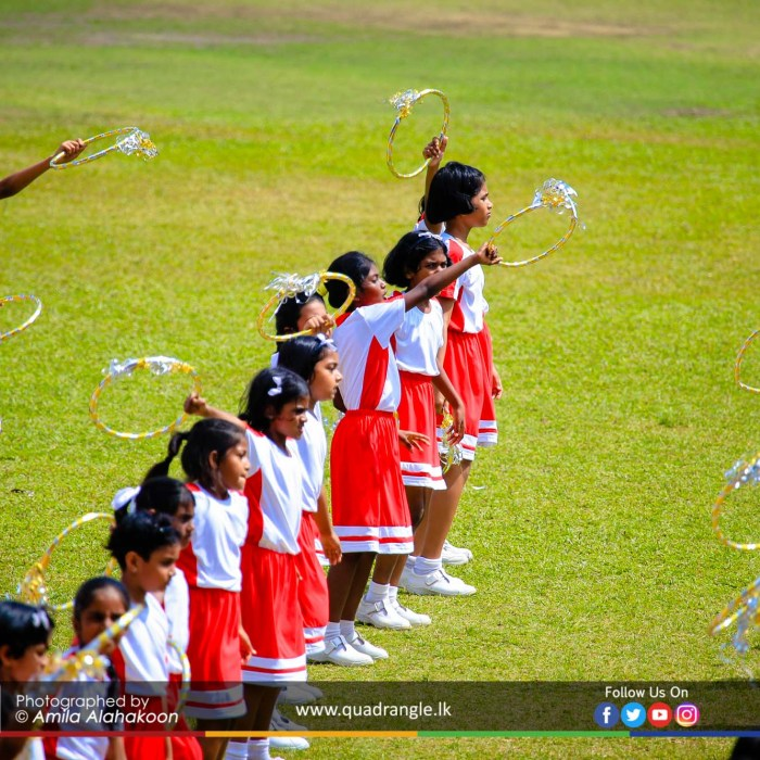 HCK_PRIMARY_SPORTSMEET_2019_DRILLDISPAY (67)