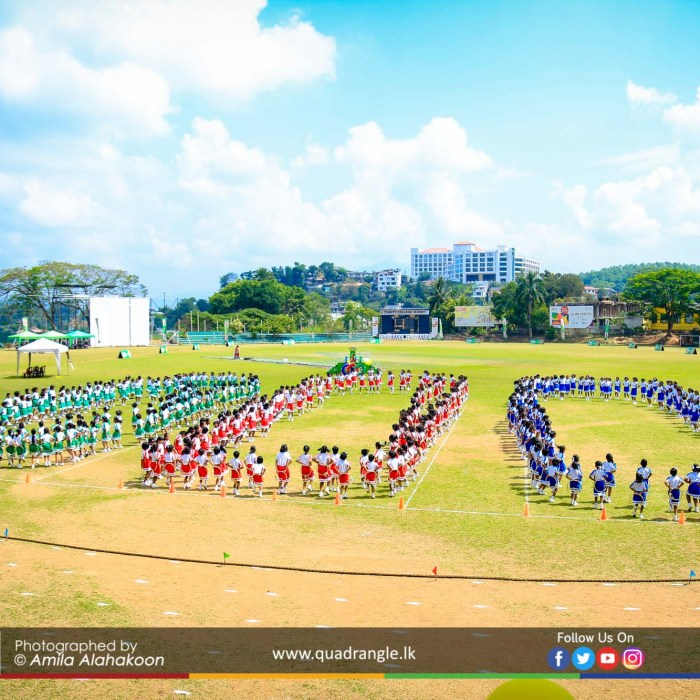 HCK_PRIMARY_SPORTSMEET_2019_DRILLDISPAY (76)