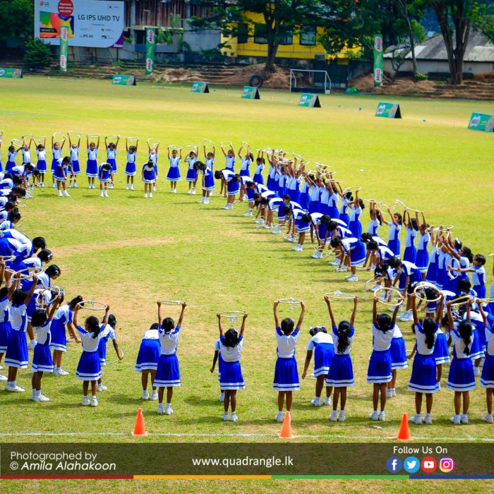 HCK_PRIMARY_SPORTSMEET_2019_DRILLDISPAY (83)