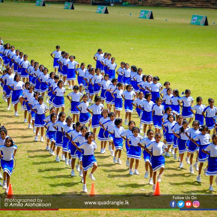 HCK_PRIMARY_SPORTSMEET_2019_DRILLDISPAY (87)