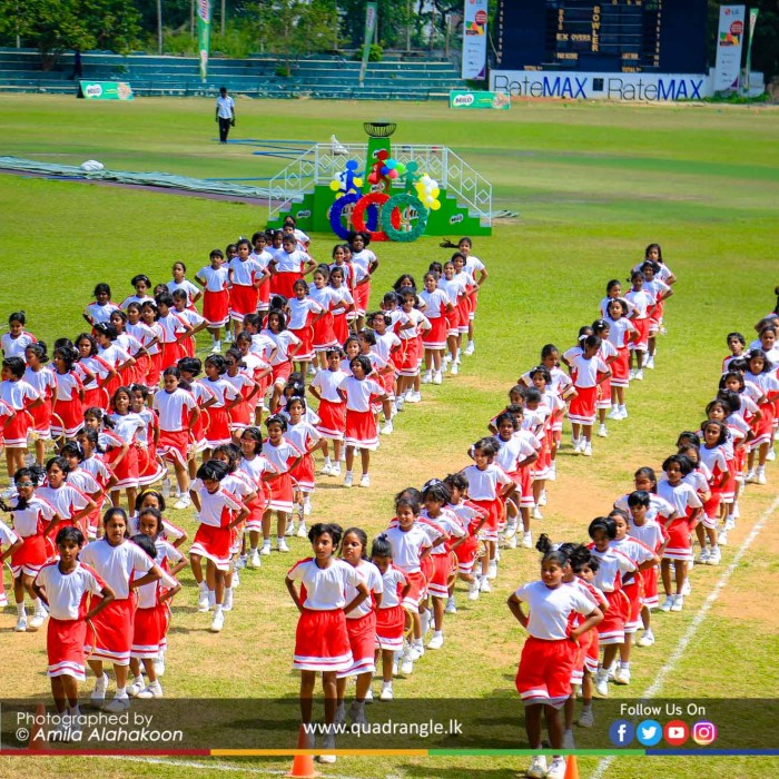 HCK_PRIMARY_SPORTSMEET_2019_DRILLDISPAY (89)