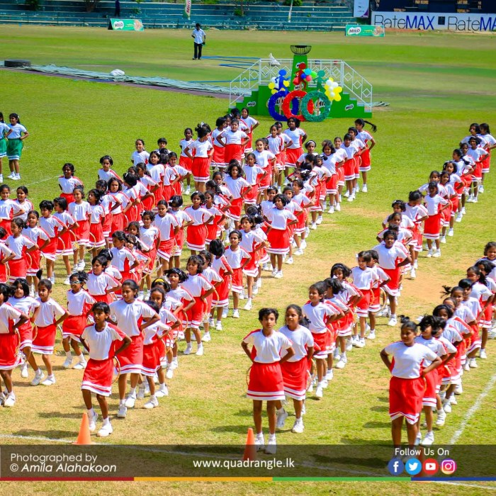 HCK_PRIMARY_SPORTSMEET_2019_DRILLDISPAY (90)