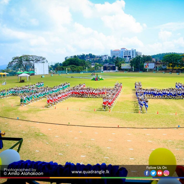 HCK_PRIMARY_SPORTSMEET_2019_DRILLDISPAY (97)