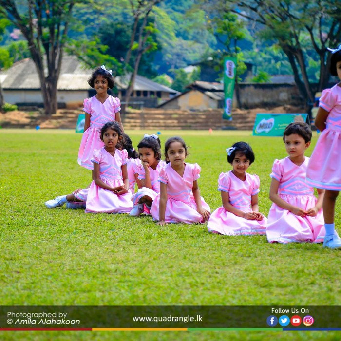 HCK_PRIMARY_SPORTSMEET_2019_EVENTS (140)