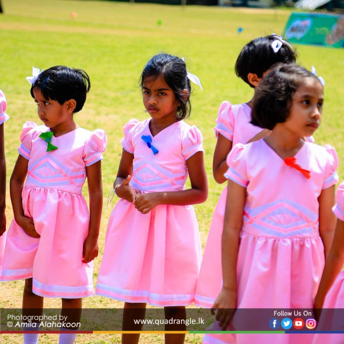 HCK_PRIMARY_SPORTSMEET_2019_EVENTS (160)