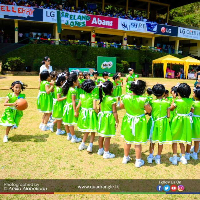 HCK_PRIMARY_SPORTSMEET_2019_EVENTS (175)