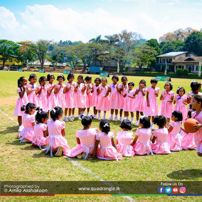 HCK_PRIMARY_SPORTSMEET_2019_EVENTS (183)