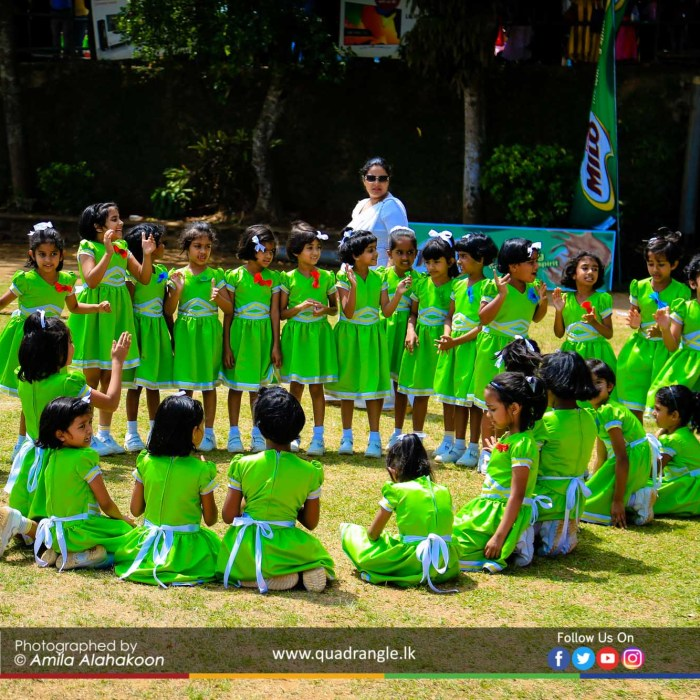 HCK_PRIMARY_SPORTSMEET_2019_EVENTS (184)