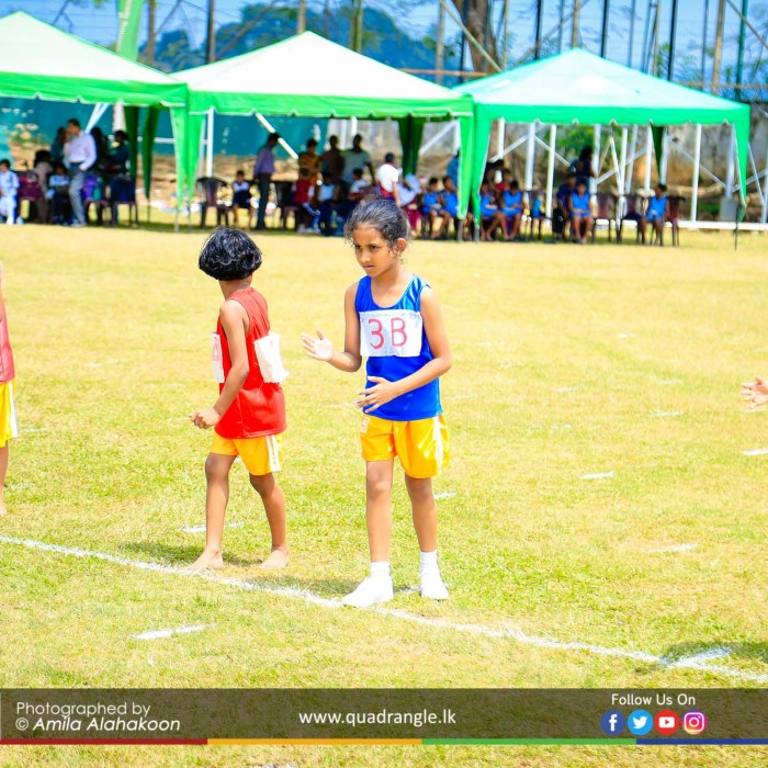 HCK_PRIMARY_SPORTSMEET_2019_EVENTS (208)