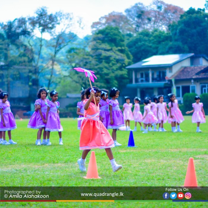 HCK_PRIMARY_SPORTSMEET_2019_EVENTS (48)