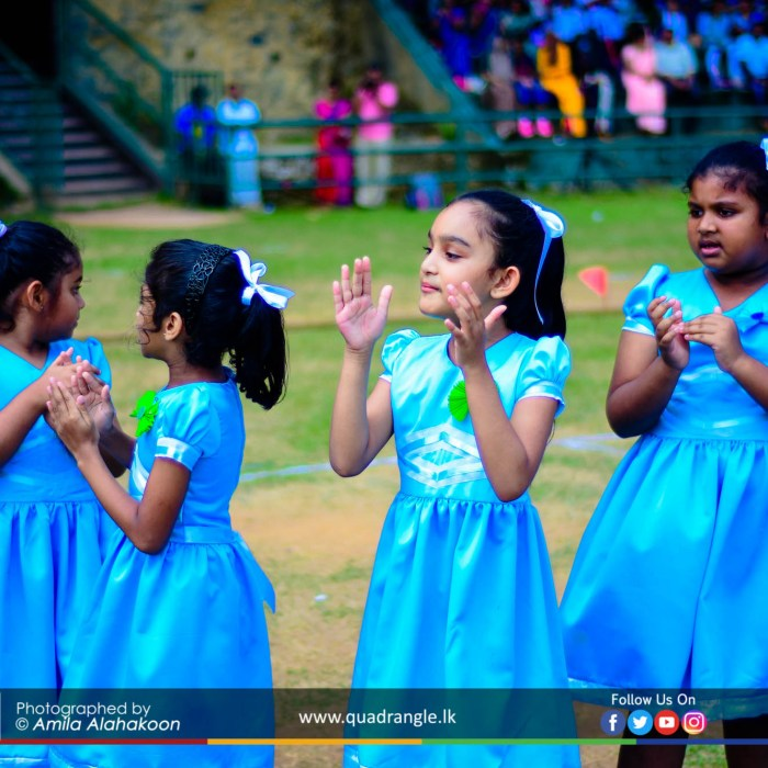 HCK_PRIMARY_SPORTSMEET_2019_EVENTS (71)