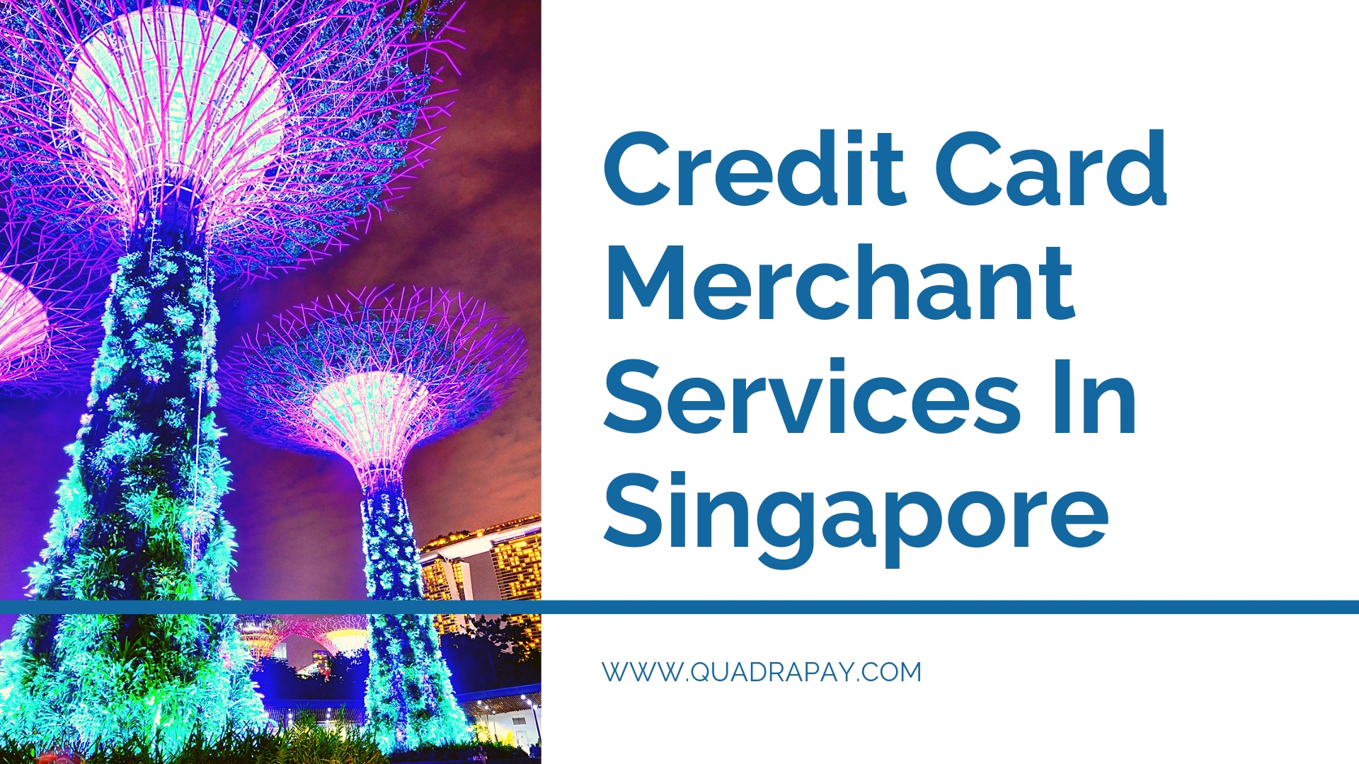 Credit Card Merchant Services In Singapore