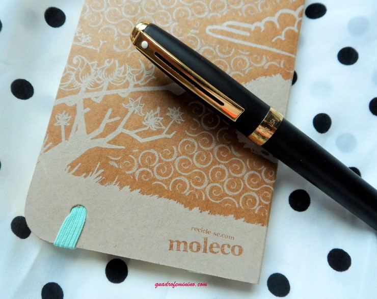 Cadernos de Bolso - Moleco