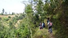School kids walking through narrow trial