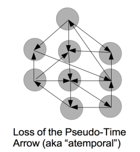 pseudo_time_arrow_loss