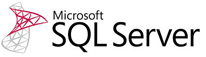 Microsoft SQL Server partners