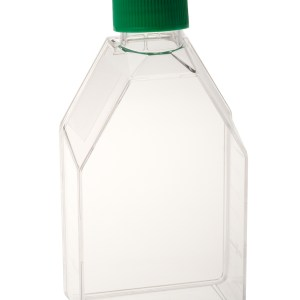 Tissue Culture Flask - 250mL, Vent Cap, Sterile