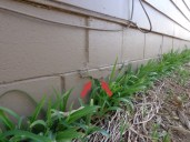 Quality Foundation Repair - Signs of foundation problems in Omaha