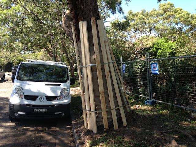 Quantacav-arboriste-expert-protection arbre