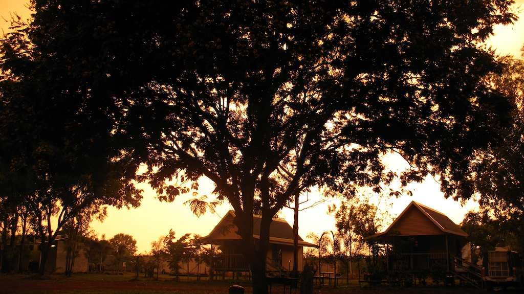 Quantacav-arbre-soleil-silhouette