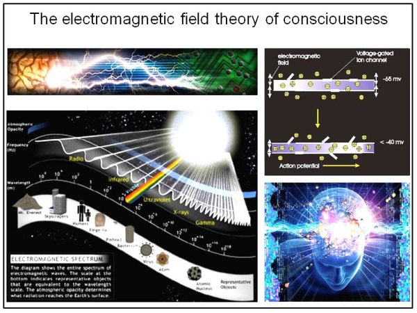 Fig. 24: The electromagnetic field theory of consciousness as part of an integral electromagnetic spectrum
