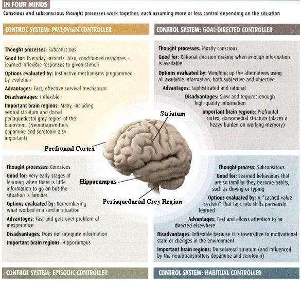 I10-43-consciousness3