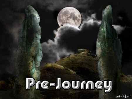 1 Pre-journey