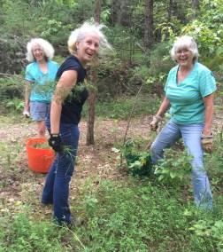 Master Naturalists weeding