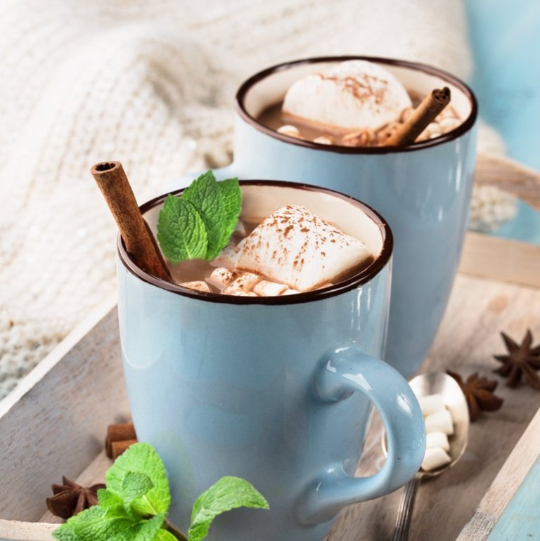 Comforting Mint Hot Chocolate