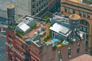 new-york-usa-rooftop-village-acheson-doyle-partners-architects