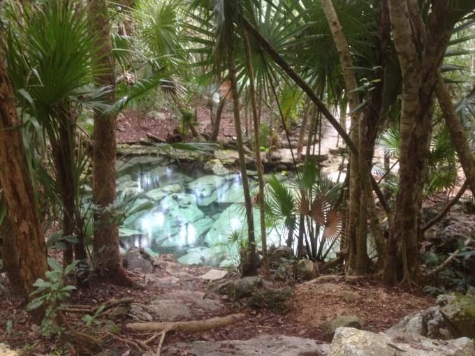 Cenote Azul na Riviera Maya