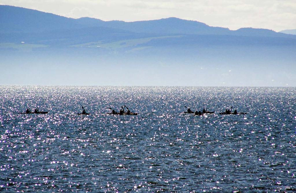 Kayak de mer Kamouraska