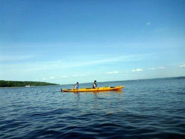 Kayak de mer Découverte Ile d'Orléans 05