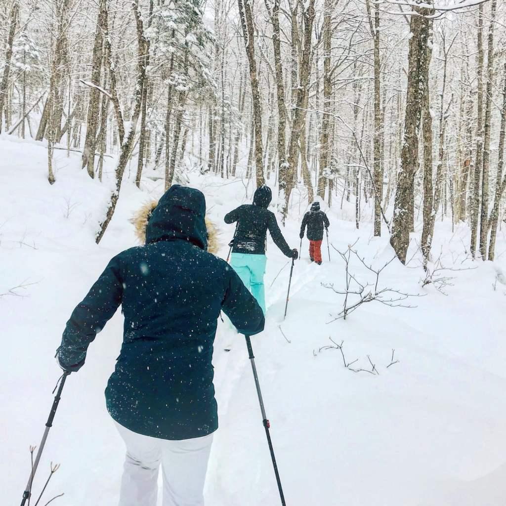 Ski nordique au parc national de la Jacques-Cartier