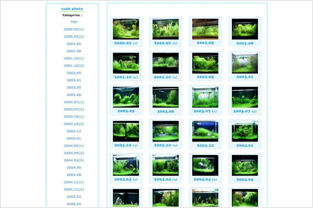 様々な水草レイアウト水槽の写真が一覧で掲載されているアクアリウムサイトまとめ