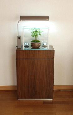 box-aqua-CubeaStump02
