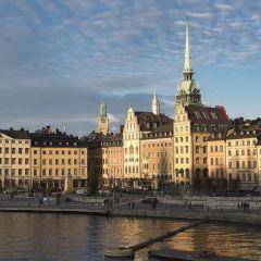 Que hacer en Estocolmo