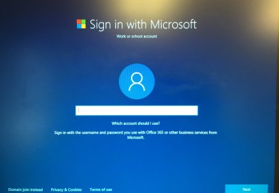 Active Directory Services not needed in Windows 10 Pro?