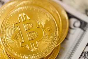 luck business money gold
