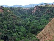 The Enchanting kyambura Gorge-Uganda Safari News
